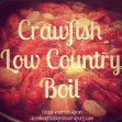Crawfish Low Country Boil - Double Knotted Apron