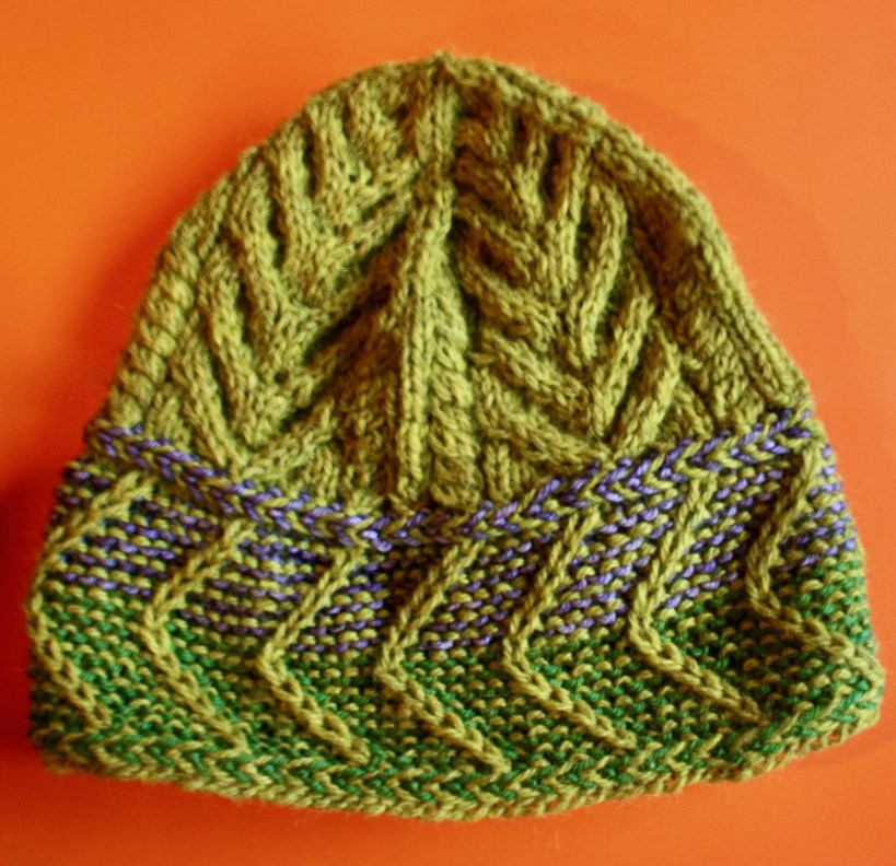 Chevron Brimmed Hat CBH0010 01