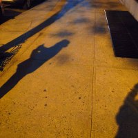 The Golden Hour—One Walk, Two Approaches