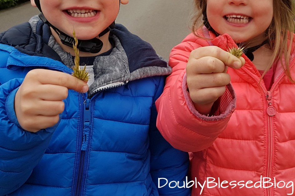 Kinderspiele - Wiesenspiele - Hahn oder Henne