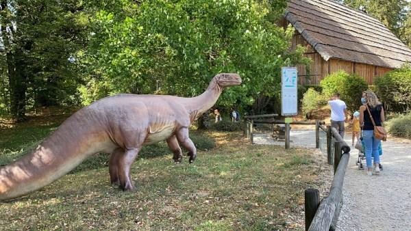 Dino Zoo été 2020