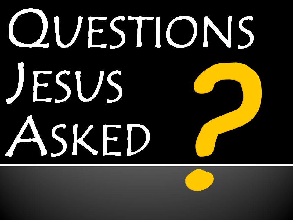 Image result for jesus questions