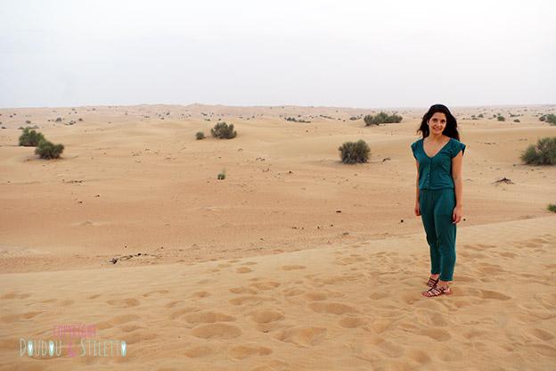Safari dubai desert