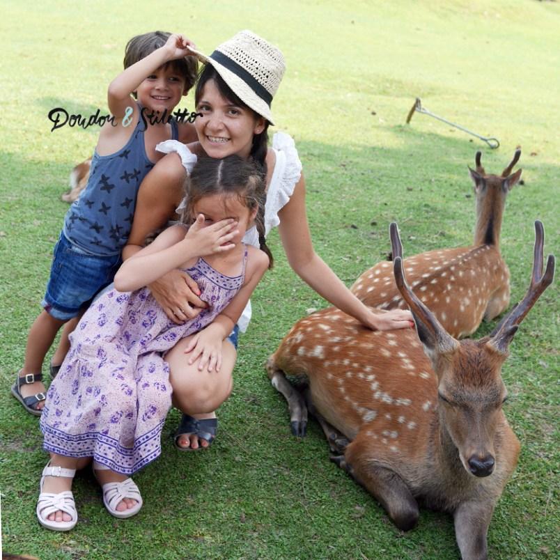 Nara japon