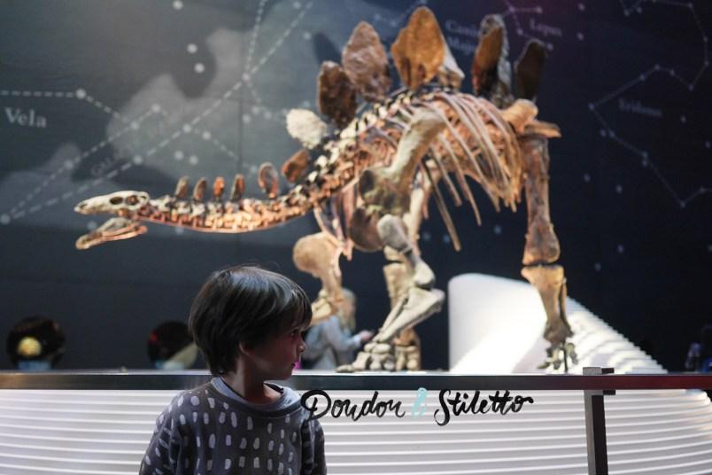 Musée d'histoire naturelle londres 7