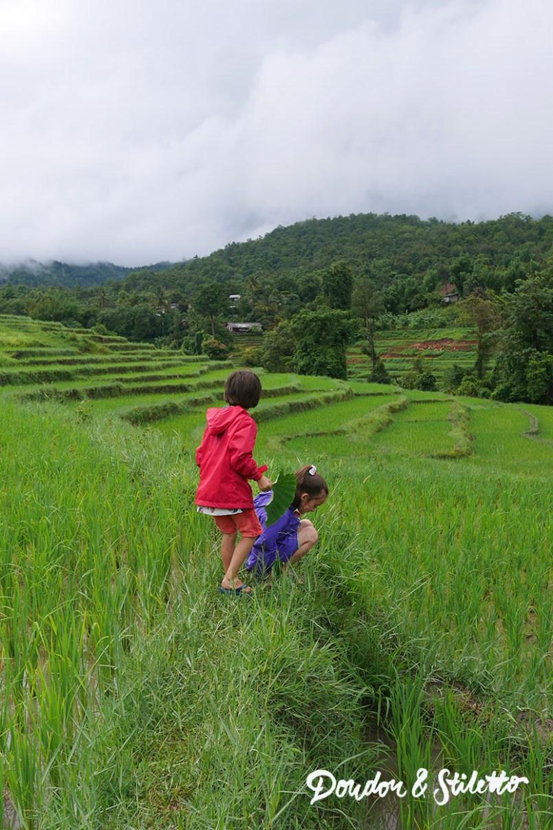Evasion Karen Chiang Mai4