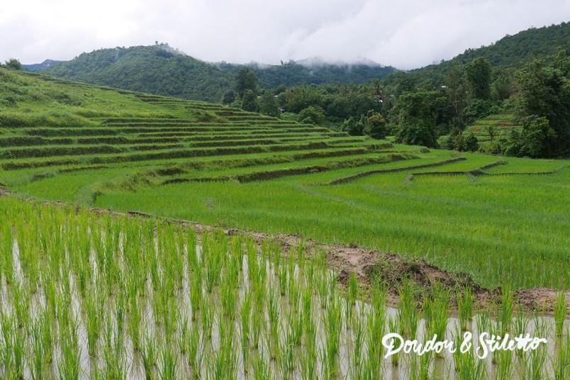 Evasion Karen Chiang Mai5