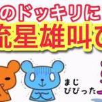 ジャニーズWEST【流星、史上最高の驚き方www】(桐山、藤井、濵田)