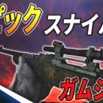【WW2実況】M1903エピック武器がめっちゃ可愛い・・・