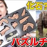 恐竜の化石のパズルチョコが面白い!