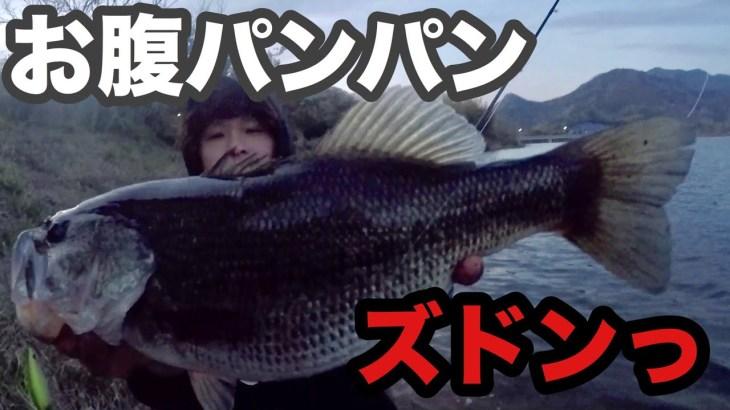 【ハプニング】足元から巨大な魚が…