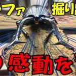 【クワガタ&カブトムシ&昆虫採集 感動しまくり!ギラファノコギリクワガタついに掘り出す!】(くろねこチャンネル)