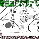 【犬と猫どっちも飼ってると】Vol 67 絶対おもしろい!「犬と猫 身の任せ方がぜんぜん違う…」chinta ch