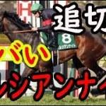 【安田記念】ペルシアンナイトの追い切りがすごい【競馬のお話ch】