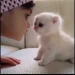 猫と赤ちゃんは親友です🔴両方もかわいい。