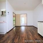 越生ハイツリノベーション1階中部屋 面白い内装の賃貸アパート 2DK