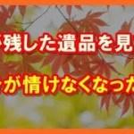 【感動する話泣ける話】紅葉と手紙