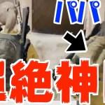 【PUBG】最高な野良さんと感動の再会からのドン勝の神展開!!!【TUTTI】