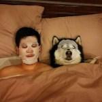 絶対笑う」最高におもしろ犬,猫,動物のハプニング, 失敗画像集 #23