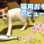 遊んでる姿がシュールで面白い魚のけりぐるみ【猫用おもちゃレビュー#7】