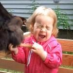 Baby and Bird Funny Fails 👶🐔 面白いベイビービデオ