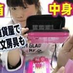 いろいろな雑貨屋で購入したかわいい文房具紹介&筆箱中身紹介♡ Hinataちゃんとゆわちゃんと同じ筆箱も大切にします♡【女子小学生の筆箱】【しほりみチャンネル】