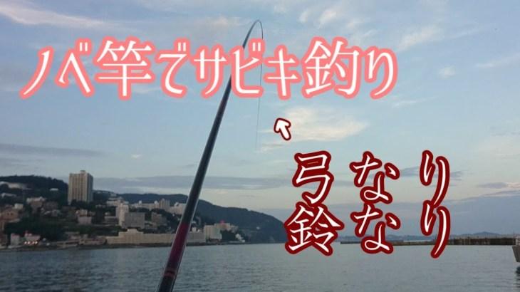 サビキ釣りをノベ竿でやると、面白い!