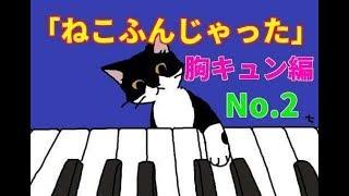 感動の「ねこふんじゃった・バラード」No.2★胸キュン編
