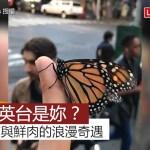 鮮肉與蝴蝶的浪漫故事 網友感動大喊:祝英台是妳?