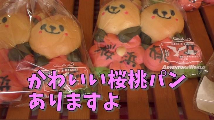 かわいい桜桃パンもありますよ!【AWS】今週のパンダ「桜浜・桃浜」2018/12/08 inアドベンチャーワールド