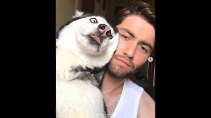 「おもしろ犬」人間化したハスキー犬が超面白い・笑わないようにしてください