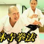 少林寺拳法って本当に凄いの?『大いなる遺産2』検証企画 Try! Shorinji Kempo
