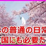 海外の反応「日本のサービス」日常に普通にありすぎて衝撃!外国人が切望する日本の物事【すごいぞ日本】