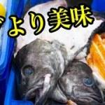 高級魚を赤字覚悟で提供するすごい店 【大阪 天王寺】