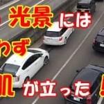 海外の反応 衝撃!!感動!!「これが日本なんだね!!」日本人ドライバーが見せた日常の光景がヤバすぎる!!と世界の外国人が賞賛した訳とは?