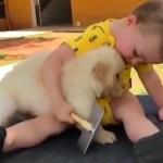 かわいいゴールデンレトリバー犬と赤ちゃん謎の会話動画特集・どっちも可愛すぎる #2