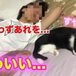 【カワイイ】子猫と彼女が寝る姿が可愛すぎて思わず…