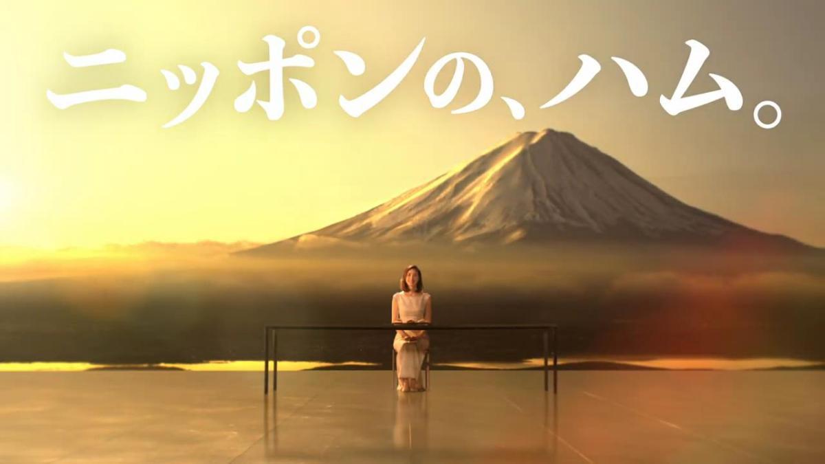 天海祐希 が出演する 日本ハム 美ノ国 のCM 「2019年お中元 これぞニッポンのハム」篇