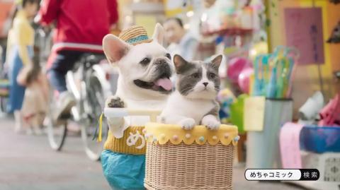 猫 めちゃコミ cm