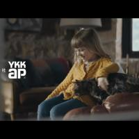 YKK AP のCM 窓と猫の物語 「Wait at home」篇。