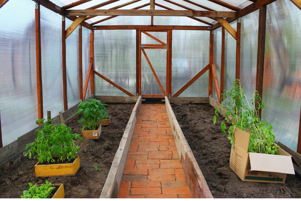 Exceptionnel Backyard Greenhouse