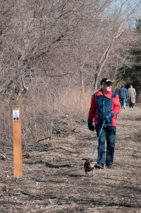 Man walks his dog along the new lakefront trail