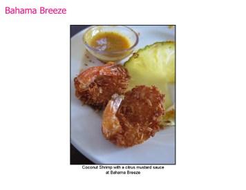 Bahama Breeze-05