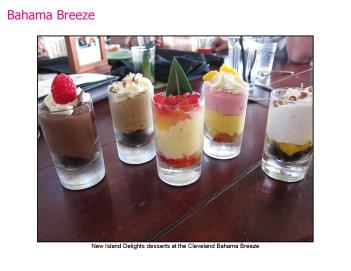 Bahama Breeze-13
