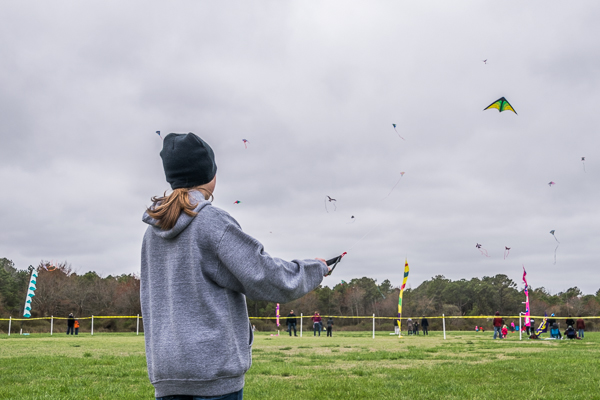 Flying high at the 46th Great Delaware Kite Festival