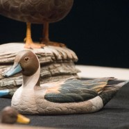 Wild, wonderful, wood carved ducks and more at the Ward Museum