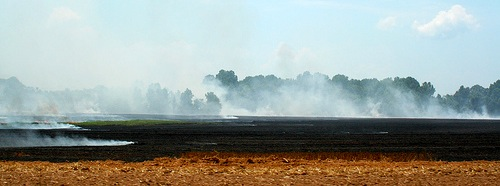 'Delta Burning' by lucianvenutian @ Flickr
