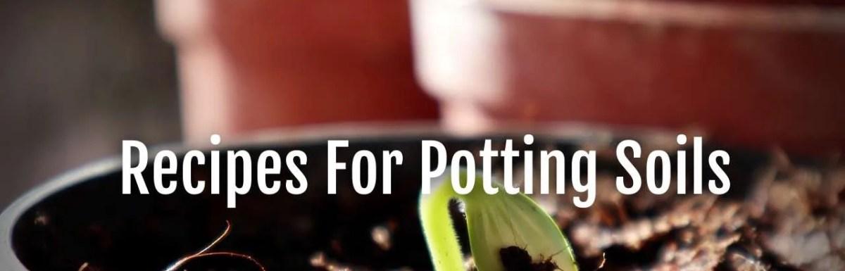 recipes potting soil