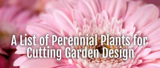 perennials cutting garden design
