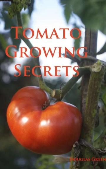 cover-tomato